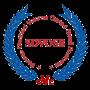 SDVOSB-Transparent-Logo-MedRes